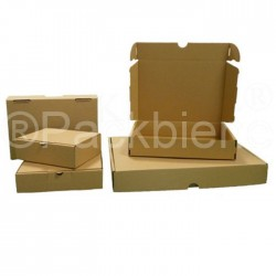 Maxibriefkarton Maxibrief 350x250x50 MB1 Braun (25 Stk.)