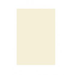 Kopierpapier A4 120g Druckerpapier beige sand pastell (250 Blatt)