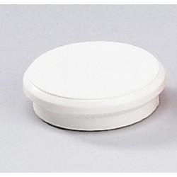Magnete rund Ø 24mm Haftkraft 300g weiß (10 Stück)