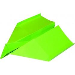 Kopierpapier A4 160g Multifunktionspapier grün maigrün intensiv 250 Blatt