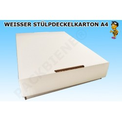 Weisser Stülpdeckelkarton DIN A4 312x210x47mm Verpackung /50mm (1000 Stk)